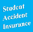 Optional Student Accident Insurance